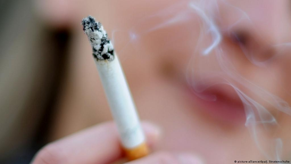 Табак и табачные изделия относятся к куплю оптом сигареты парламент
