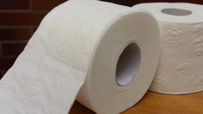 DW Global Ideas Lernpaket #2 Wald 4 (Toilettenpapier)