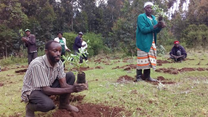 DW Global Ideas Lernpaket #2 Wald 16 (Baumpflanzung, Kenia)