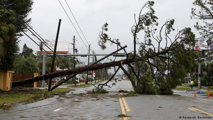 A tree and broken power lines lie across the road during Hurricane Michael (Reuters/J. Bachman)