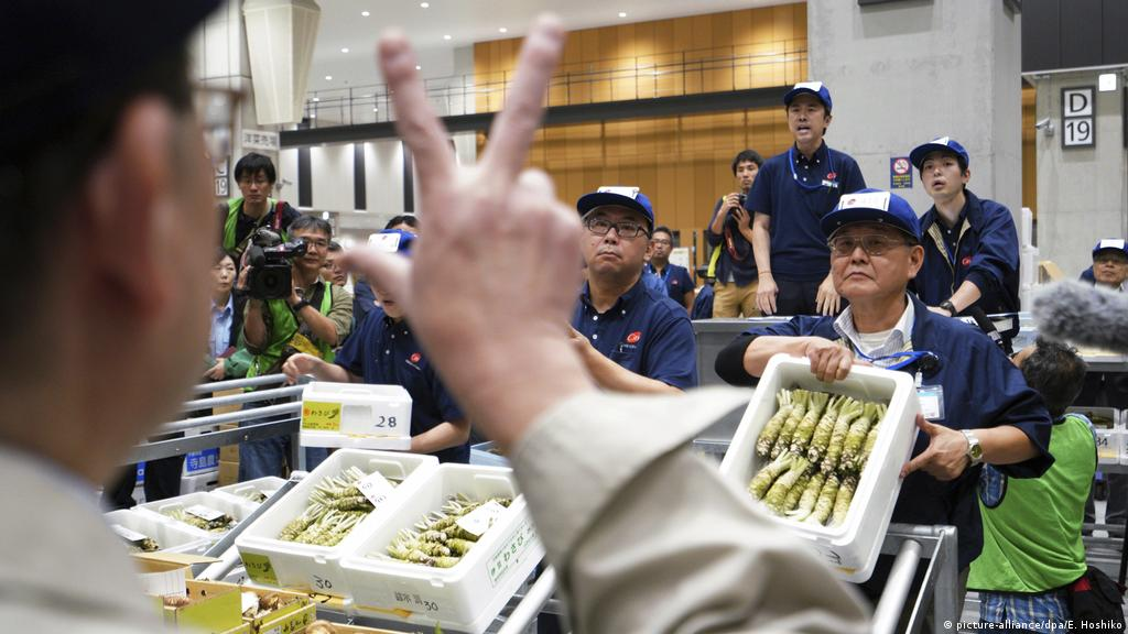 Tokyo′s new fish market opens on waterfront | DW Travel | DW | 11 10