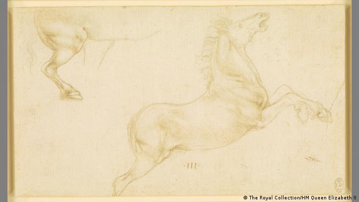 Leonardo da Vinci, sketch of horse (The Royal Collection/HM Queen Elizabeth II)