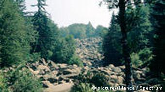 Gebirge Vitosha