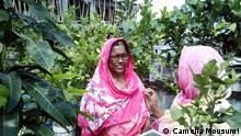 Bangladesch Dachgarten in Dhaka