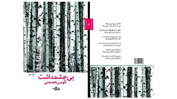 جلد کتاب بیچشمداشت، اثر موسی عصمتی