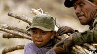 Guatemalas Landwirtschaft leidet unter Dürren, Stürmen und abgeschotteten Märkten (Foto: ap)