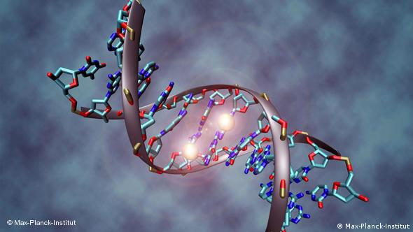 A DNA double helix with genes changing their position