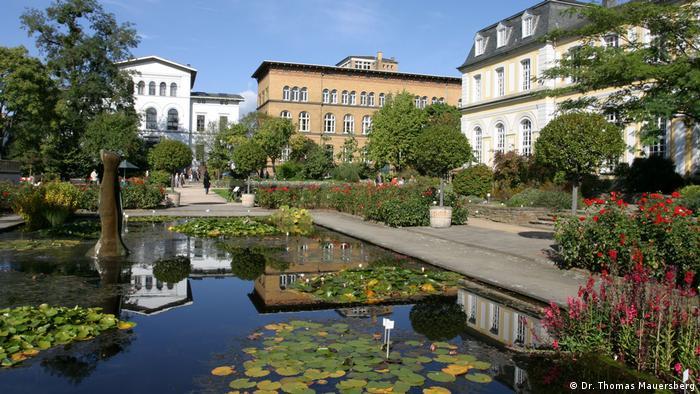 Ботанический сад при Боннском университете