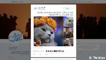 Screenshot Twitter | ShehabAgency