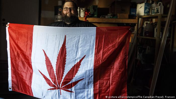 Canadian flag with a pot leaf in the middle