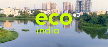 DW Eco India logo