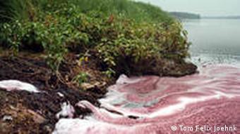 roter Fluss(Foto: Tom Felix Joehnk)