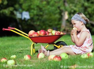 Ein Kind sitzt auf einer Wiese und isst Äpfel