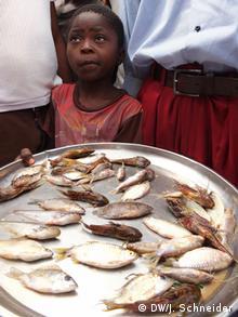 Ein Mädchen hält ein Tablett mit kleinen Fischen