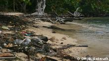 Müllstrand Müll am Strand Honduras