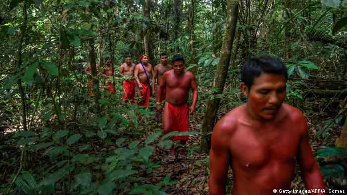 Men of the indigenous tribe Waiapi walk into the jungle