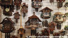 Traditionelle Kuckucksuhren in einem Andenkenladen, Füssen, Bayern, Deutschland, Europa   Verwendung weltweit, Keine Weitergabe an Wiederverkäufer.