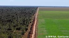 WWF Living Planet Report Brasilien Monokulturen