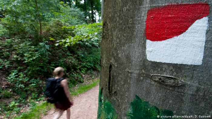 person walking down a trail (picture-alliance/dpa/K. D. Gabbert)