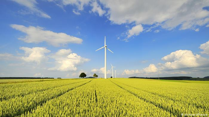 Windmills and a green field in front of expansive sky