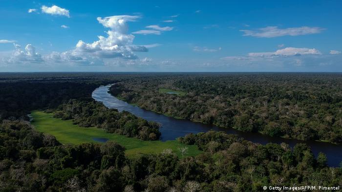 Selva Amazónica de Brasil