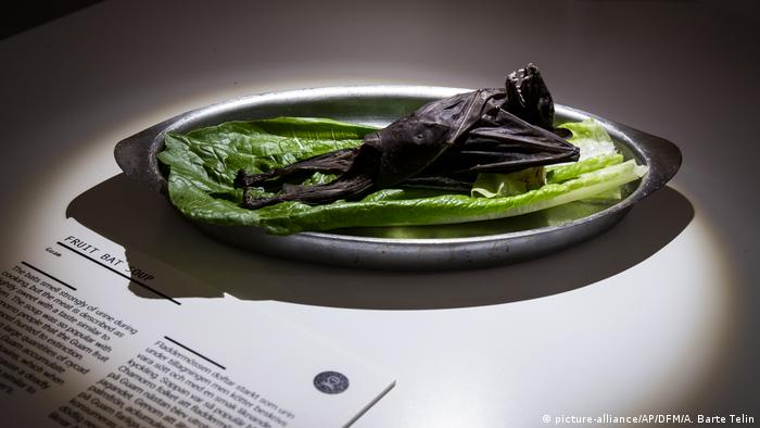 Fruit bat at the Disgusting Food Museum in Malmo, Sweden (picture-alliance/AP/DFM/A. Barte Telin)