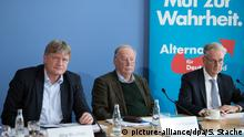 AfD press conference in Berlin in November