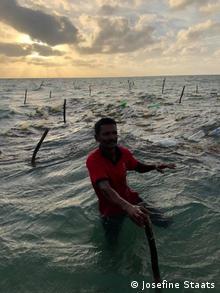 Ein Mann steht in einem Gewässer, im Hintergrund Reusen. Er hält Algen in den Händen
