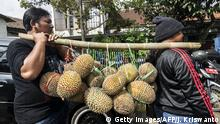 Indonesien Durian-Frucht (Getty Images/AFP/J. Kriswanto)