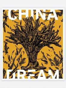 Buchcover chinesischer Autor Ma Jian China Dream