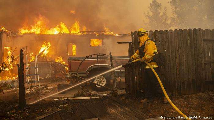 Waldbrände in Kalifornien (picture-alliance/dpa/H. Amezcua)