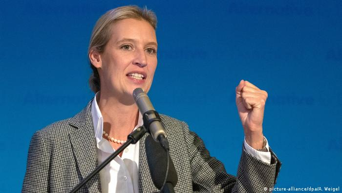 Alice Weidel (picture-alliance/dpa/A. Weigel)
