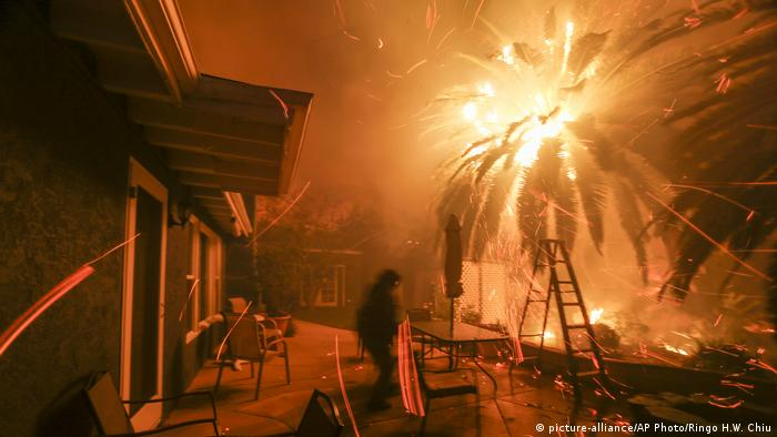 California wildfires (picture-alliance/AP Photo/Ringo H.W. Chiu)