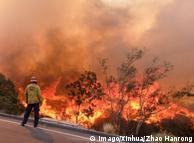 Пожежник спостерігає за вогнем біля шосе у Каліфорнії