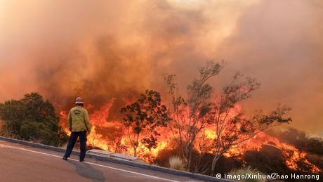 Пожежі в Каліфорнії: кількість загиблих зростає