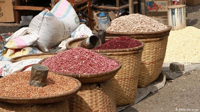 Mosambik | Moatize Trade Fair (DW/A. Zacarias)