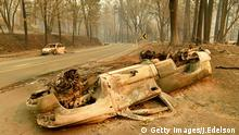 Burned out cars in California