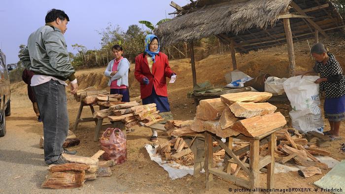Laos - Verkauf von Adlerholzbaum (picture-alliance/imageBROKER/K.-W. Friedrich)