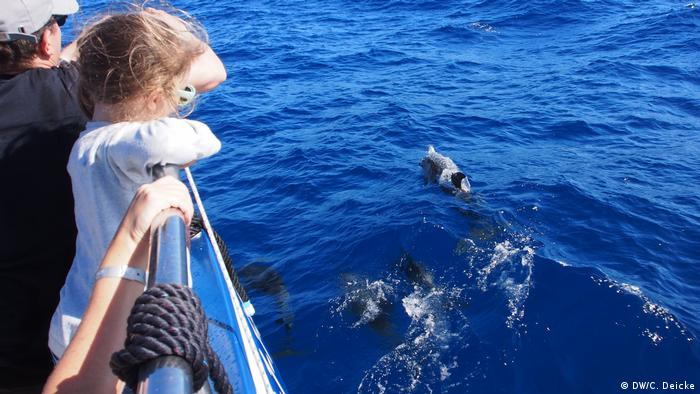 A girl holds her tight at the reling while dolphins are swimming around the ship.