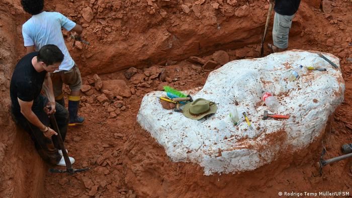 Arqueólogos escavam parte dos esqueletos do dinossauro Macrocollum itaquii, descoberto no Rio Grande do Sul