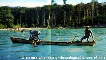 In this undated photo released by the Anthropological Survey of India Sentinelese tribe men row their canoe in Indias Andaman and Nicobar archipelago. From circumstantial evidence, officials say fate and the ancient knowledge of secret signals in the wind and sea have combined to save the five indigenous tribes living for centuries in the southern archipelago of Andaman and Nicobar from the catastrophic tsunami that lashed Asian coastlines last week. But the fate of the tribes, on the verge of extinction, will be known with certainty only after officials complete a survey of their remote islands beginning Wednesday. (AP Photo/Anthropological Survey of India, HO) |