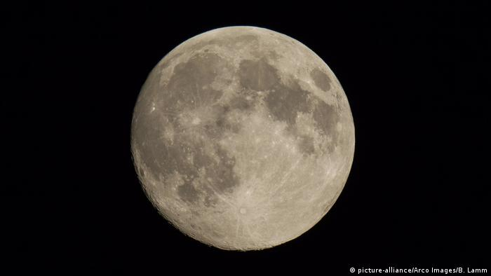 Full moon in the night sky (picture-alliance/Arco Images/B. Lamm)