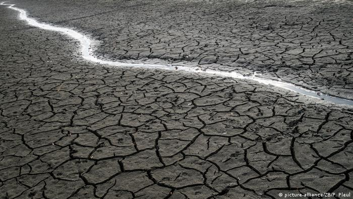 Dünyanın birçok bölgesi kuraklık tehdidi altında