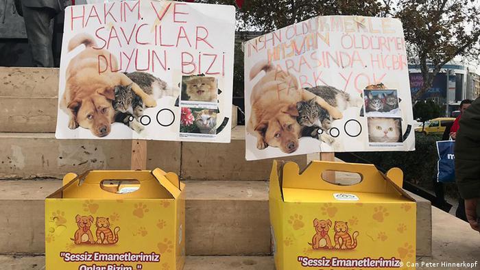 Hayvan hakları savunucularının bir gösterisi (Arşiv)