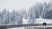 25.02.2018, Bayern, Eck: Ein Paar geht an dem Roßfeld-Panoramaweg an der deutsch-österreichischen Grenze am verschneiten Geländer entlang. Foto: Lino Mirgeler/dpa | Verwendung weltweit
