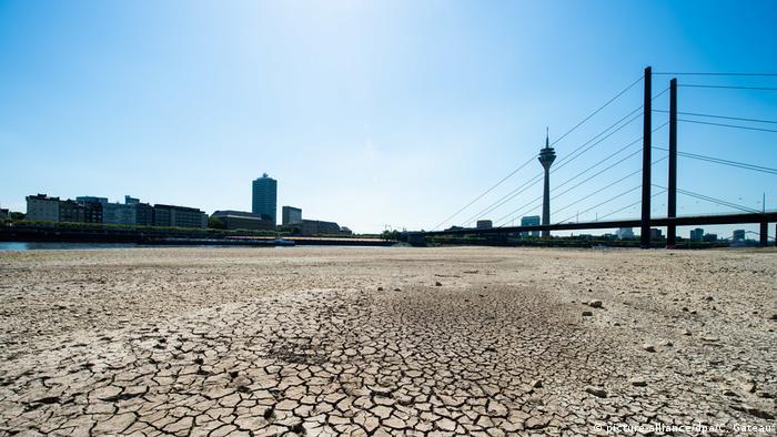 Рейн у Дюссельдорфі, 2018 рік