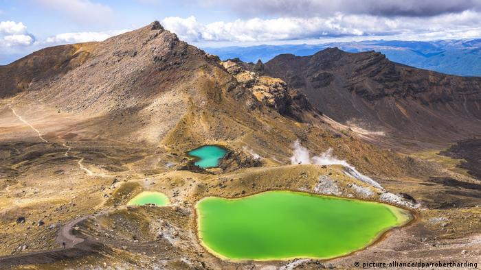 New Zealand. Tongariro Alpine Crossing. Bright green pools on the side of a grassy brown mountain.