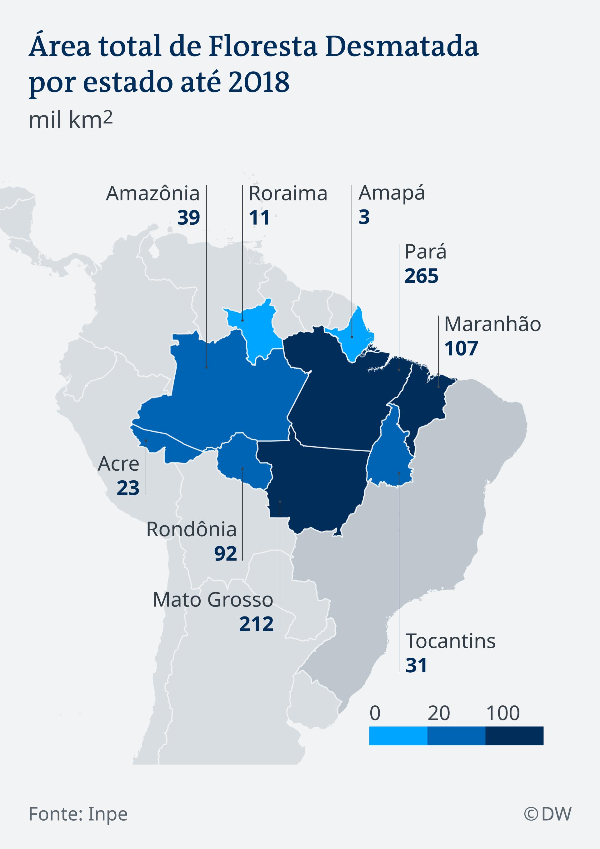 Infográfico mostra área total de floresta desmatada na Amazônia por estado até 2018