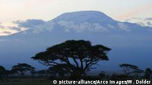 Kenia Landschaft Kilimanjaro