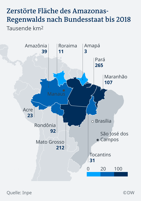Infografik Abholzung Amazonas DE